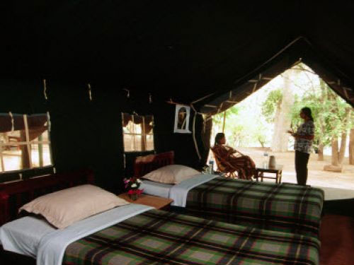 bannerghatta national park accommodation